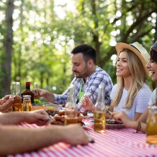 https://fincavalleabedules.com/wp-content/uploads/2020/07/group-of-friends-having-barbecue-party-in-nature-39AGUYW-540x540.jpg